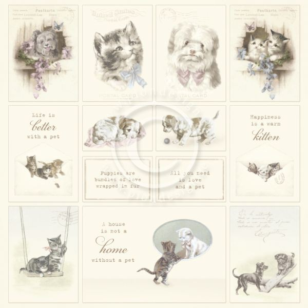 Pion Design Our Furry Friends Images from the Past