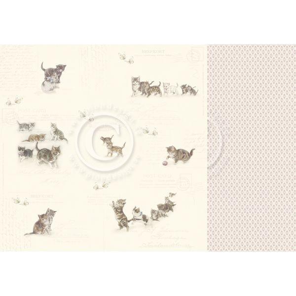 Pion Design Our Furry Friends Leaving Paw-Prints