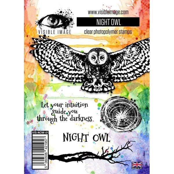 Visible Image Night Owl