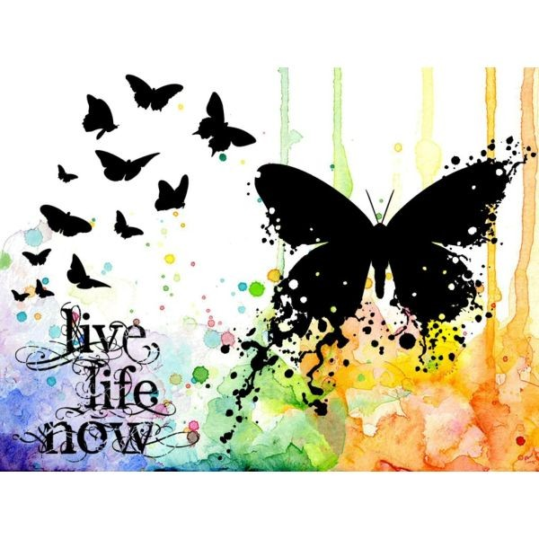 Visible Image Live Life Now