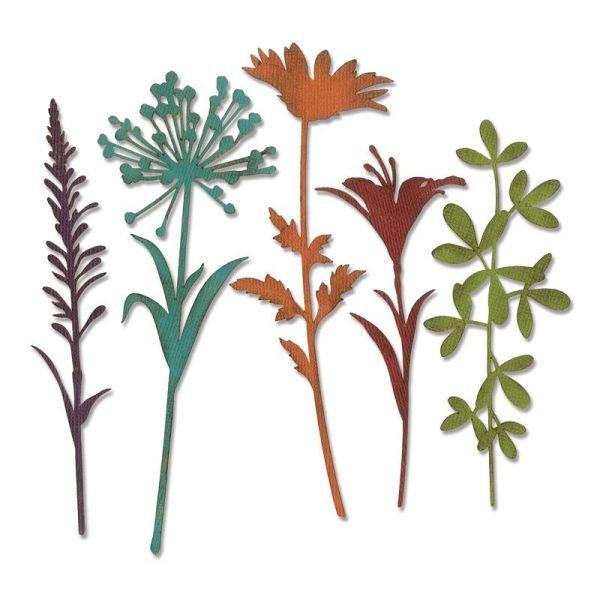 Tim Holtz Alterations Thinlits Wildflower Stems No. 2