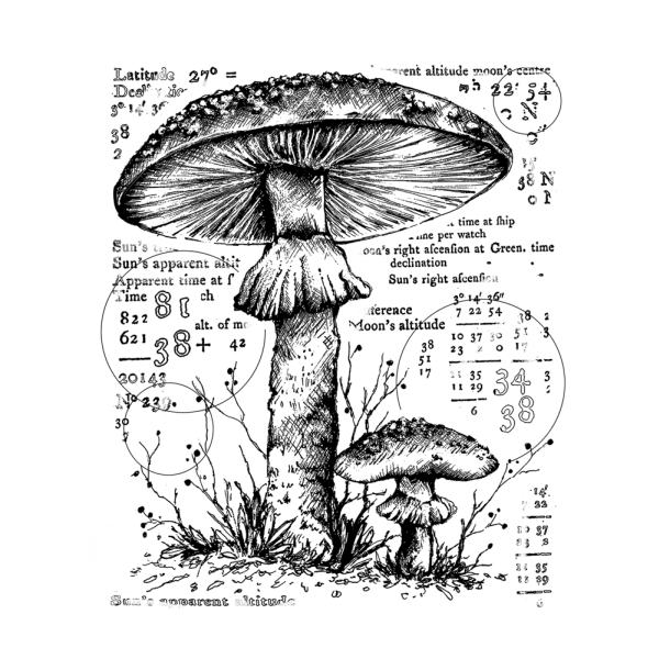 Crafty Individuals Counting Toadstools