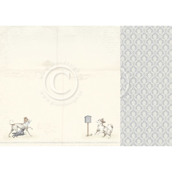 Pion Design Our Furry Friends You´ve got Mail