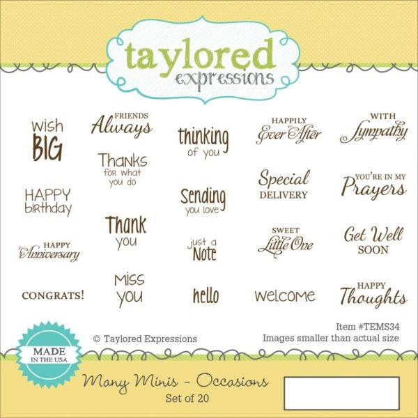 Taylored Expressions Many Minis Occasions